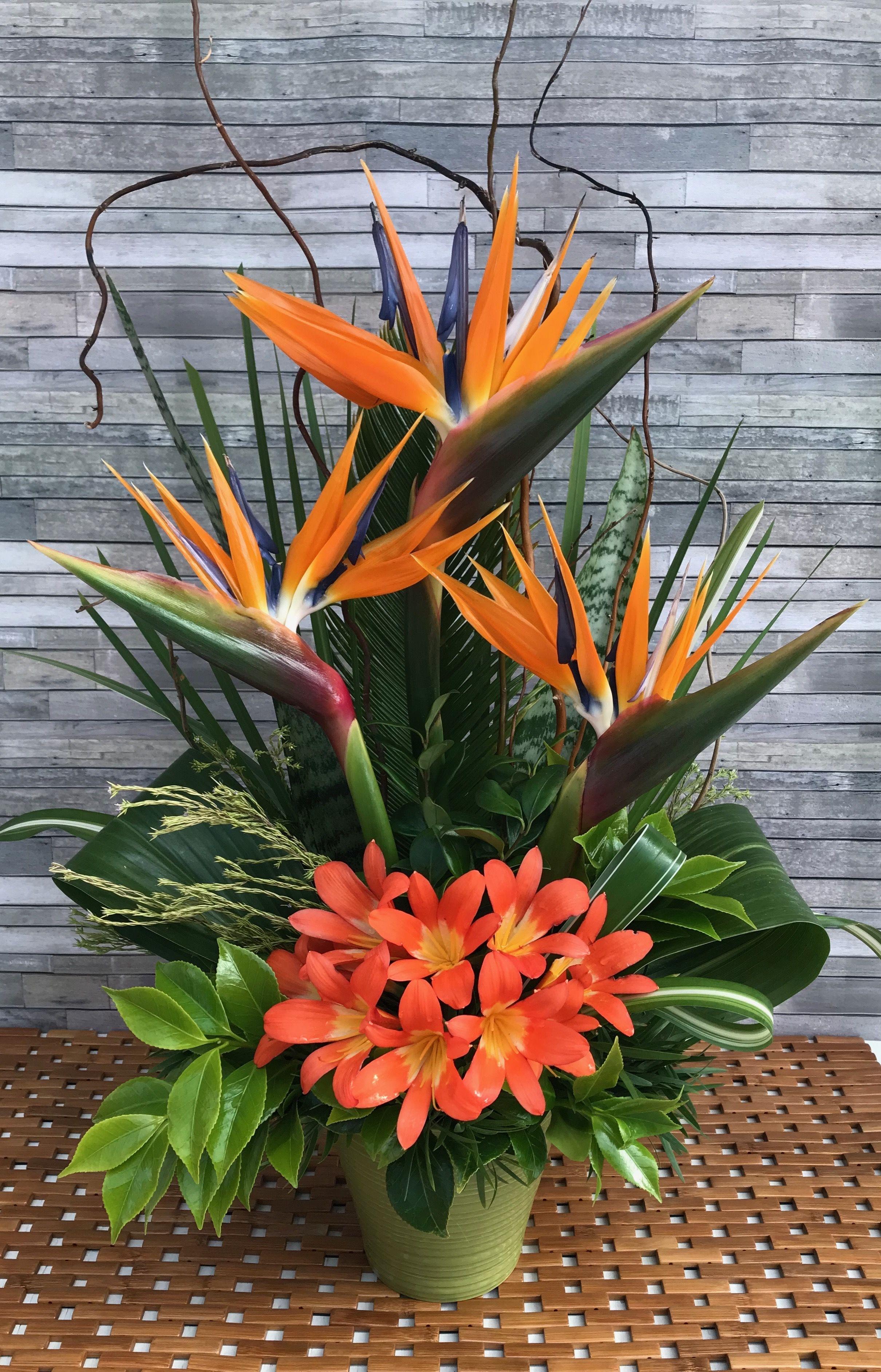 Bird of paradise tropical arrangement. Large flower
