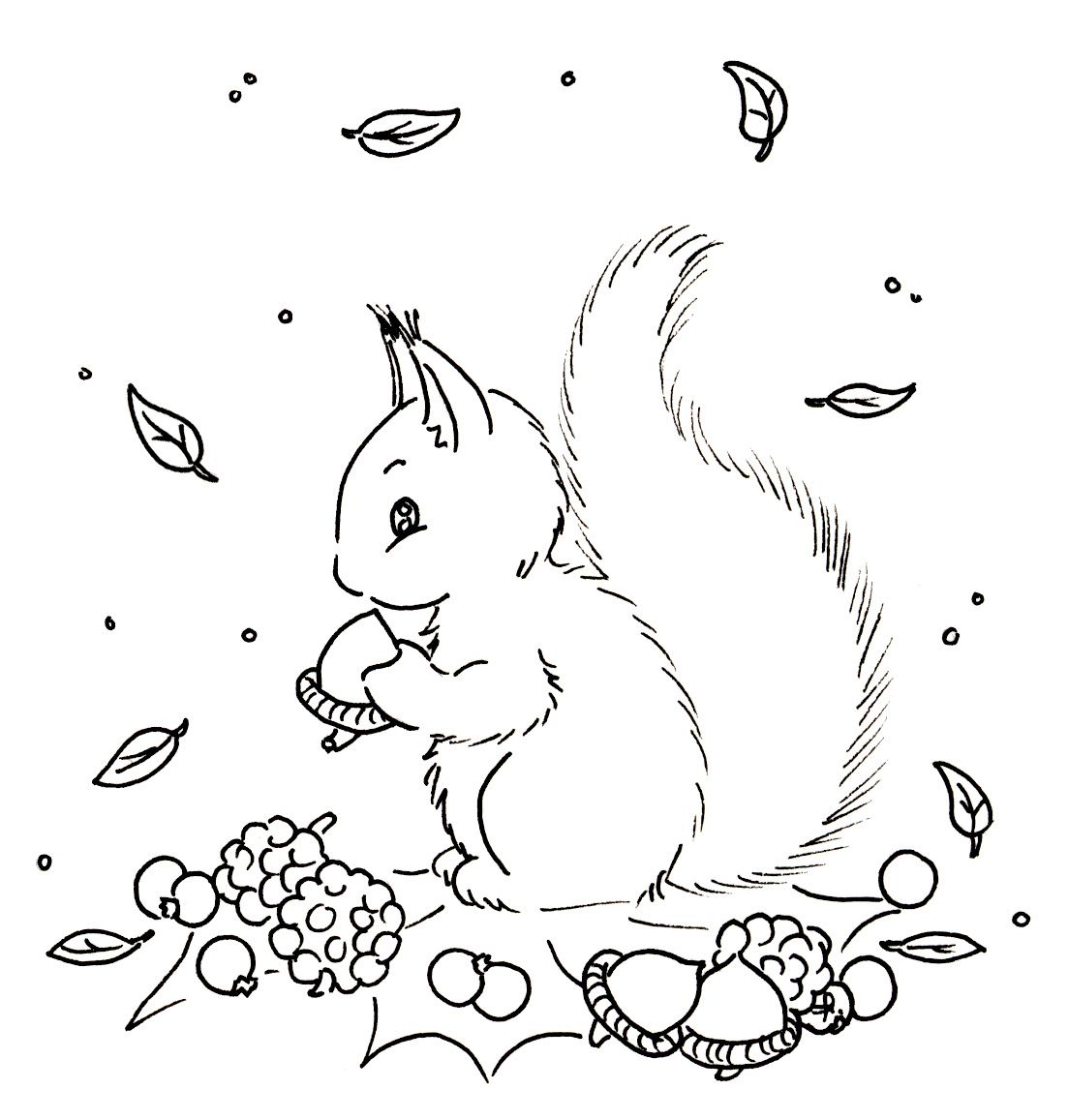 Squirrel Embroidery patterns vintage Embroidery