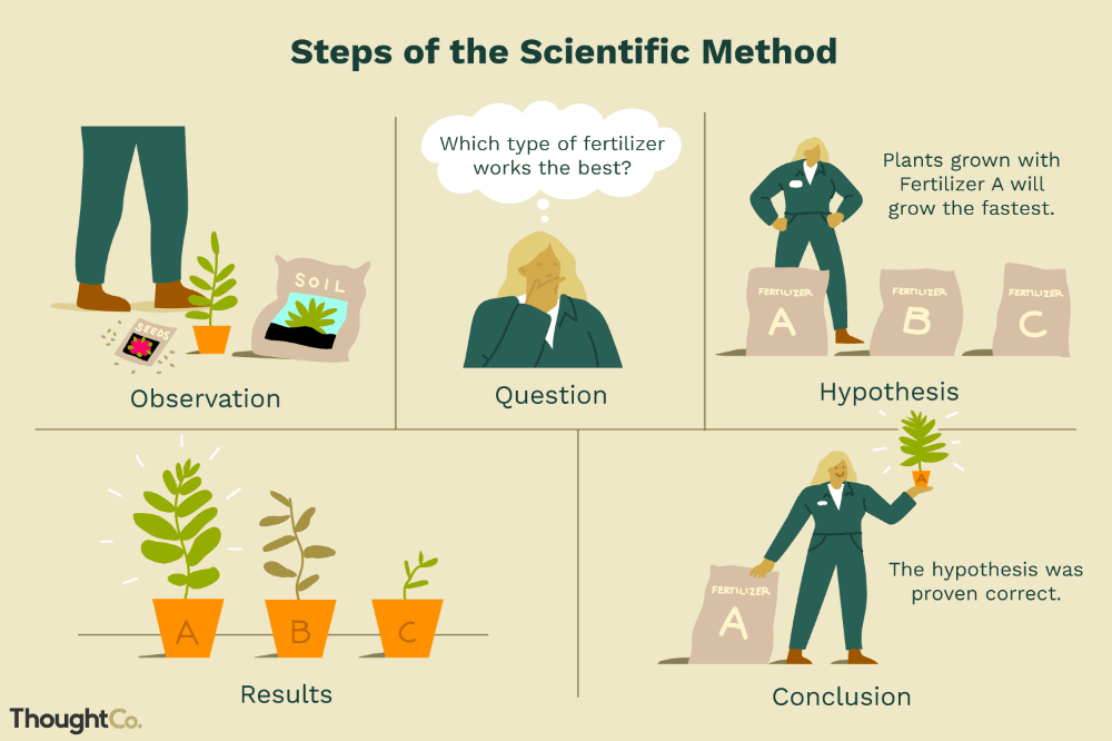 Know The Steps Of The Scientific Method Scientific Method Scientific Method Worksheet Scientific Method Questions