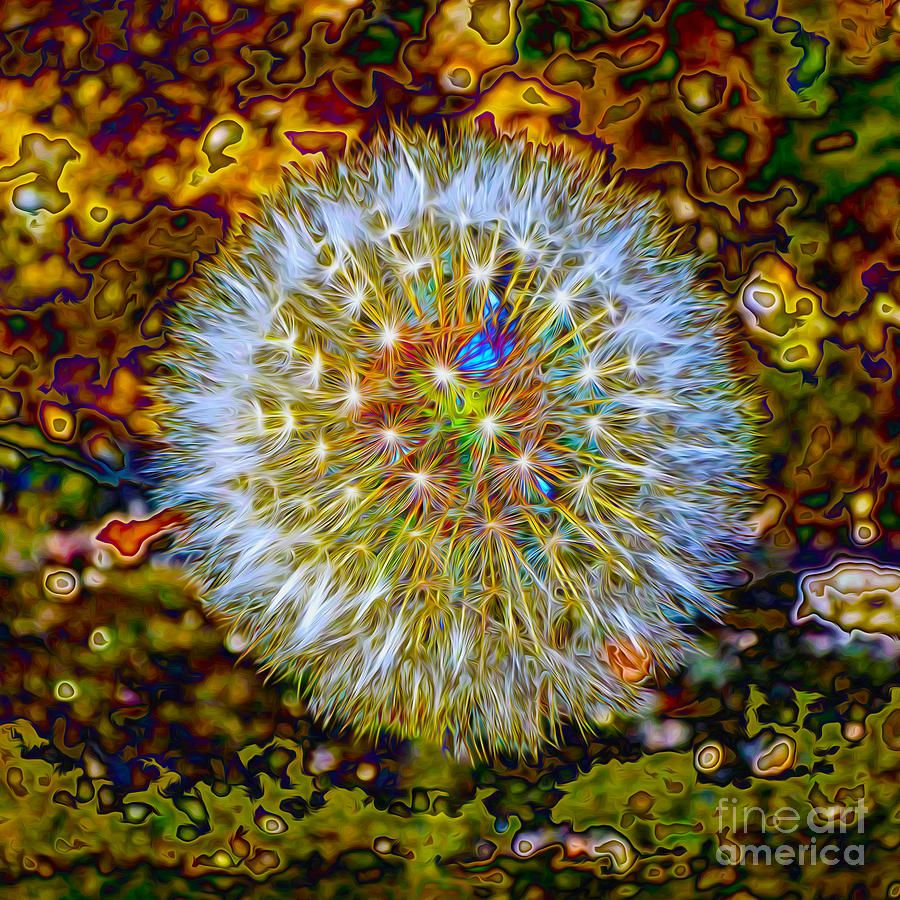 Psychedelic Dandelion Digital Art