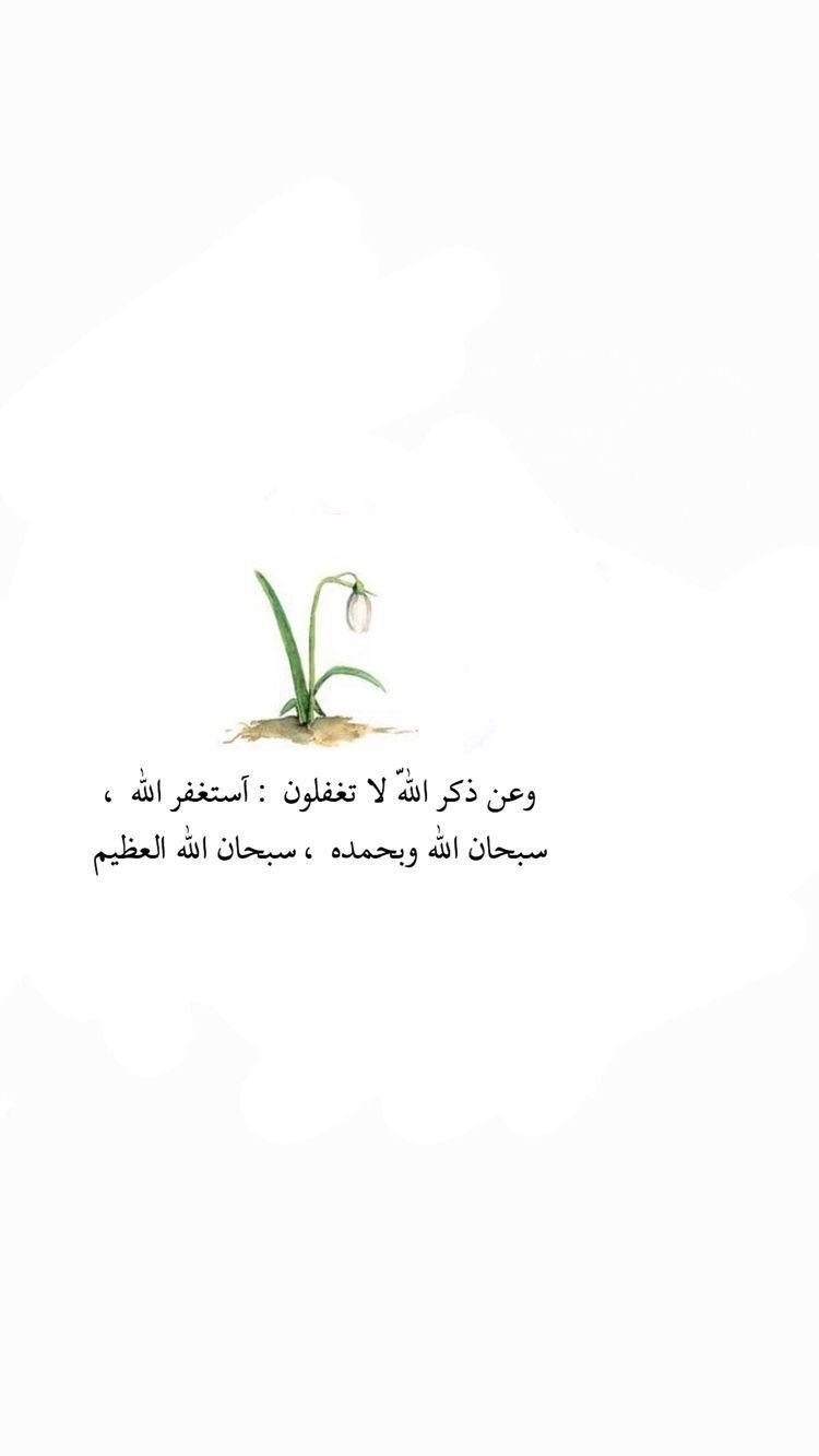 خواطر صباحية دينية Quran Quotes Islamic Quotes Quran Quotes For Book Lovers