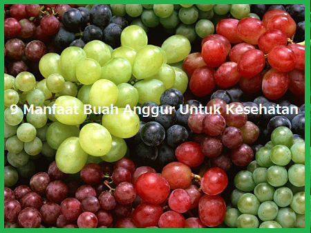Manfaat Buah Anggur Hitam Tanpa Biji