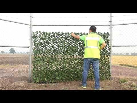 C mo hacer un muro verde artificial youtube follaje for Follaje para jardin