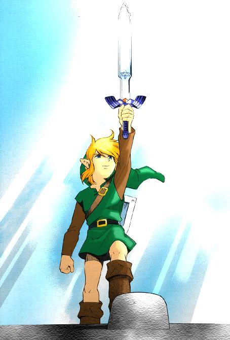 One Of The Greatest Moments In History Legend Of Zelda Hyrule Warriors Zelda Art