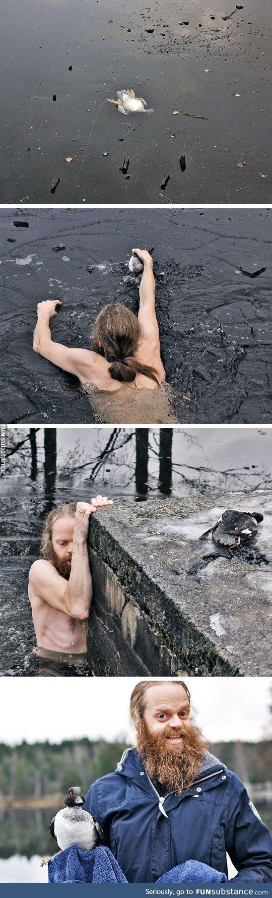 Norwegian man saves a duck - Kate Groner -  -  #menschlichkeitwiederhergestellt