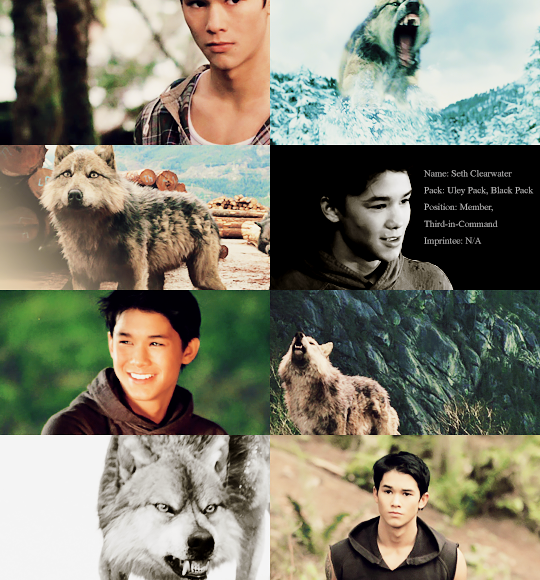 "Werewolves Shifters: ""La Push Shape-shifters: Seth Clearwater """