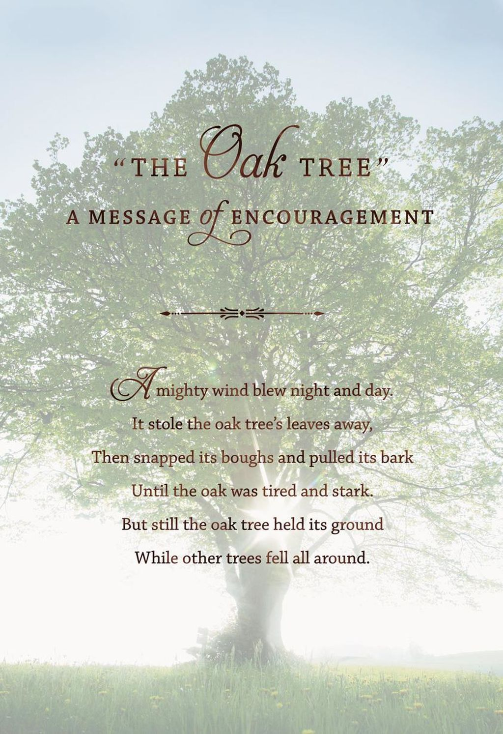 The Mighty Oak Tree Encouragement Card In 2020 Encouragement