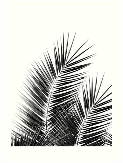 Black Palm Leaves Dream Cali Summer Vibes 1 Tropical Decor Art Art Prints By Anitabe Canvas Print Collage Palm Tree Wall Art Black And White Aesthetic