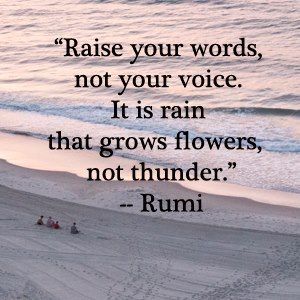 Image result for do not raise your voice raise your words