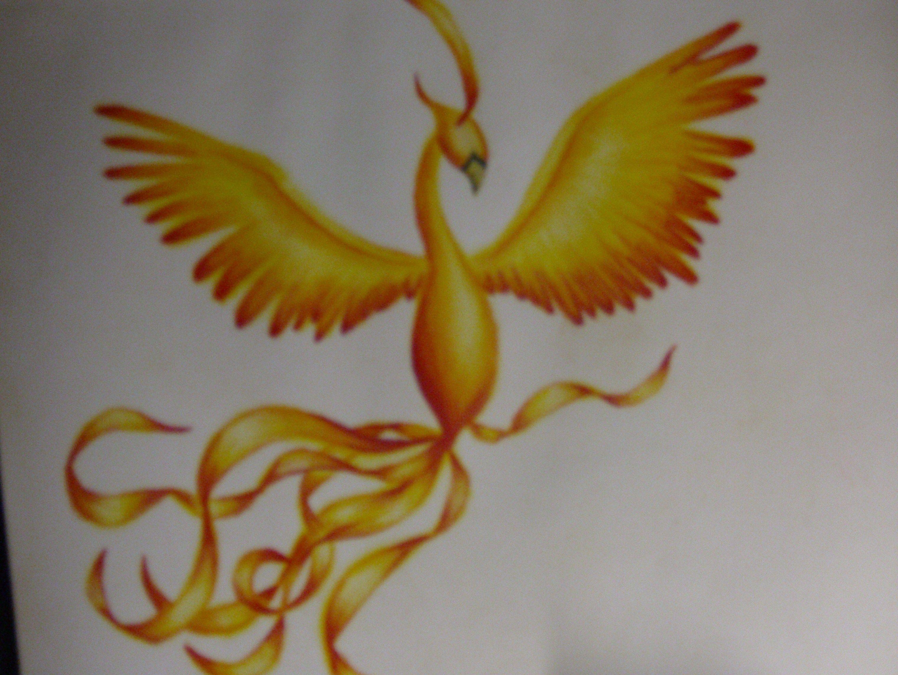 phoenix drawing I did way back when