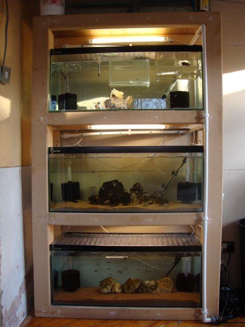 Aquarium Rack Diy Stand