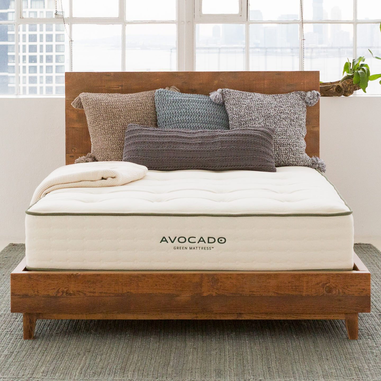 Mattress Discounts And Promotions Avocado Green Mattress Green Mattress Discount Mattresses Bed Frame With