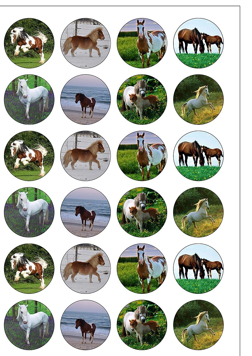 24 precut horse and pony edible wafer paper round cake