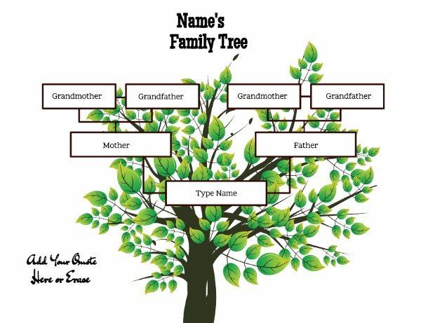 3 Generation Family Tree Template Word Images - Template Design Free
