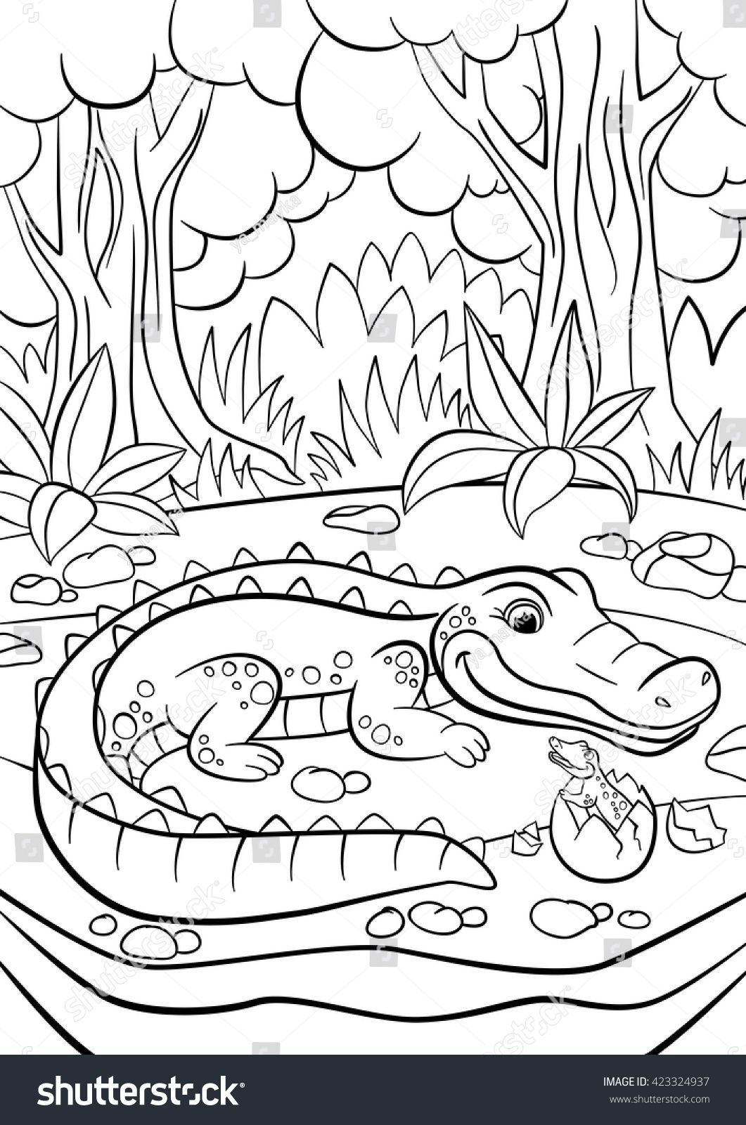 Coloring Pages Animals Mother Alligator Looks At Her Little Cute