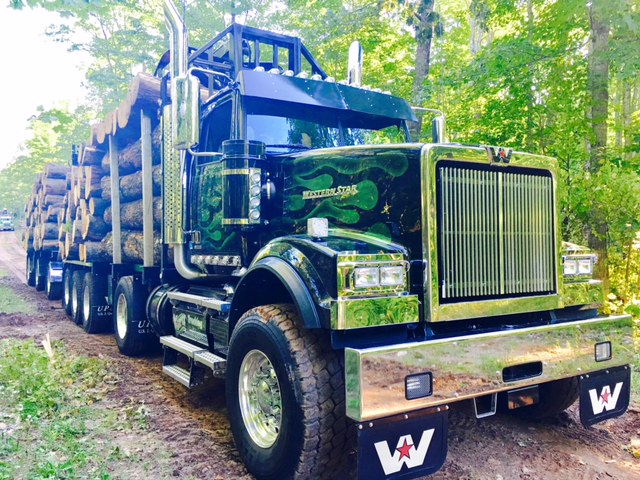 Into The Woods Western Star 4900 Looks Good Hauling Logs Western Star Trucks Built Truck New Trucks