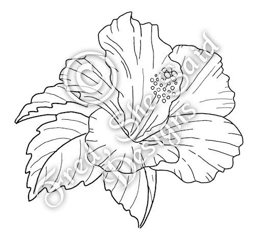 -includes the hibiscus image plus some extra leaves in case you want to tuck them behind to help fill out the design. JPG/PNG + printable sheet