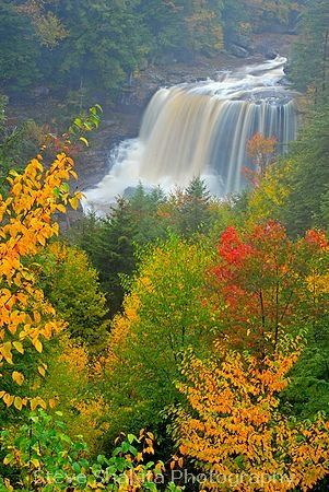 Blackwater Falls, West Virginia. Beautiful place to visit in the fall. #westvirginia
