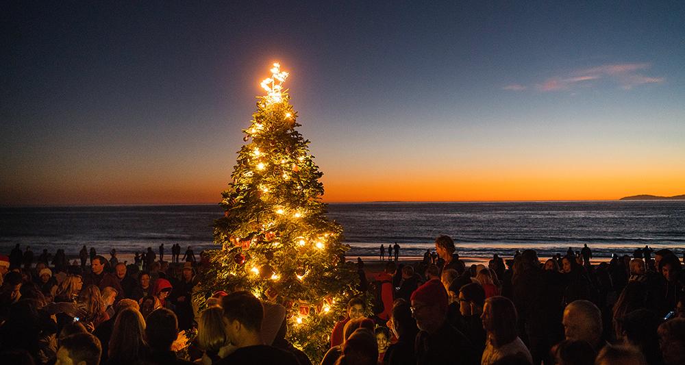 Image Result For Christmas Orange County Orange Christmas Christmas Seasons Tree Lighting