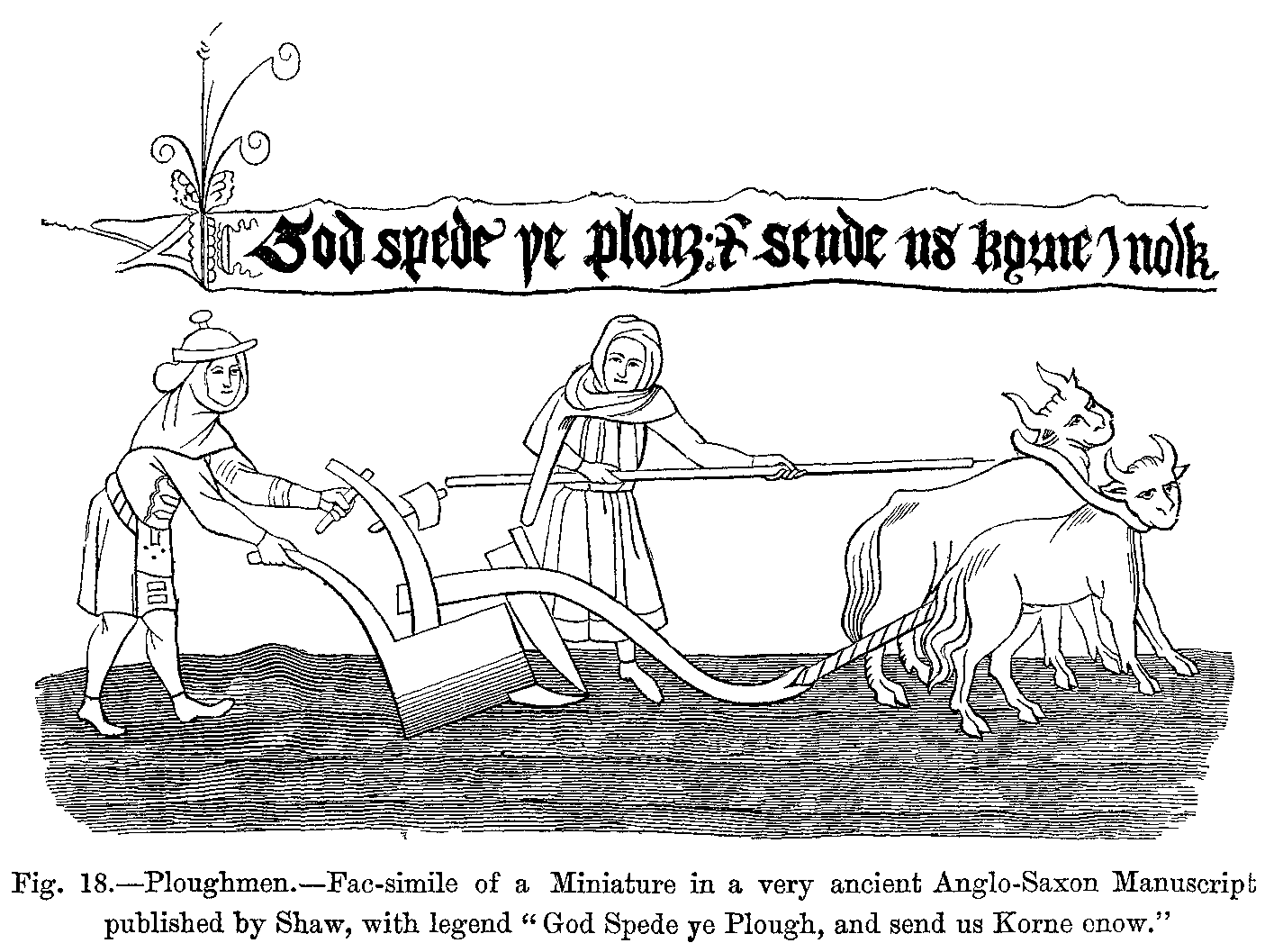 During The Ninth And Tenth Centuries New Agricultural Techniques The Moldboard Plow The Three