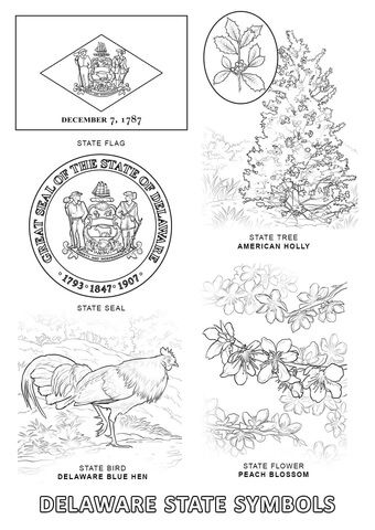 Delaware State Symbols Coloring Page State Symbols Bird