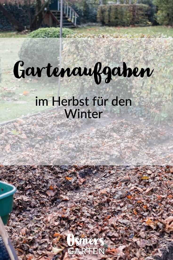 Gartenaufgaben im Herbst für den Winter #tomatenzüchten
