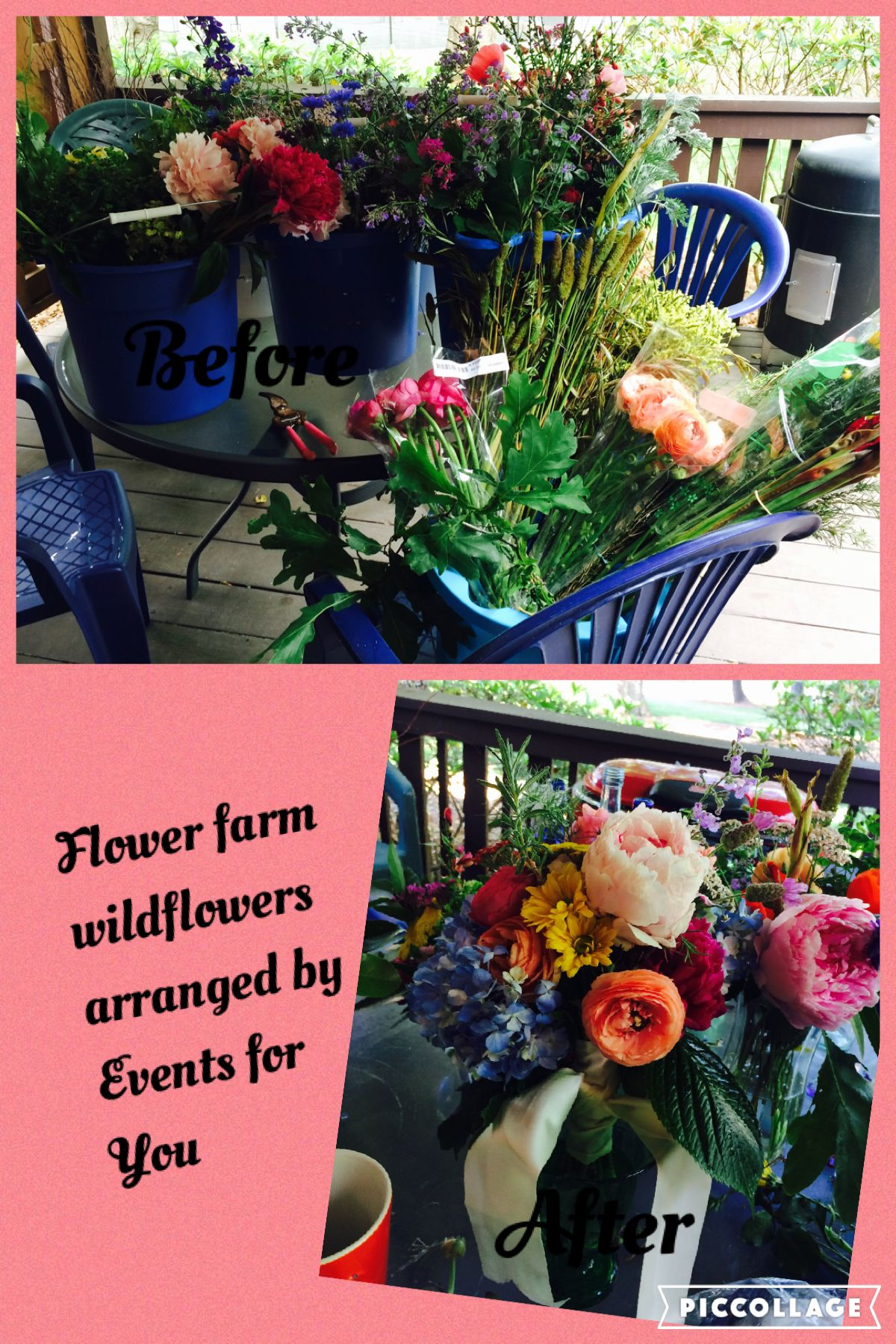 Flowers From Flying Cloud Farm In Fairview Nc Flowers For You Flower Farm Flowers