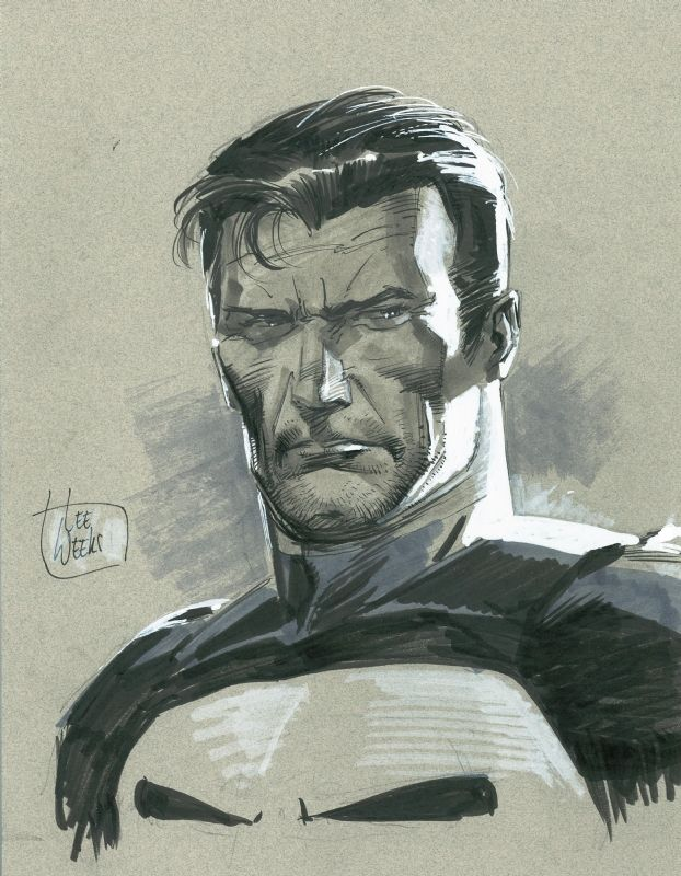 Punisher by Lee Weeks