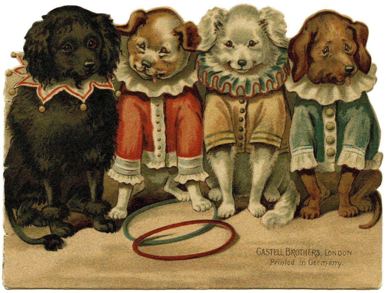 собачки на ретро открытках данной развертке