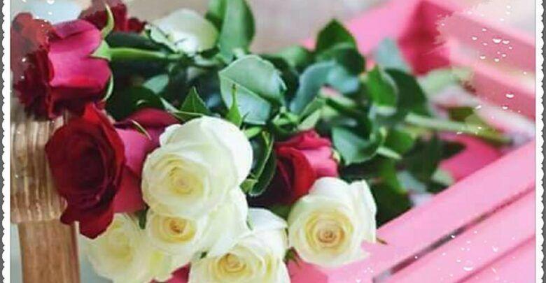 بحث عن صلاة الجمعة ومجموعة من الأدعية المستجابة ليوم الجمعة Flowers Rose Plants