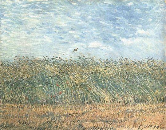 A Caixa B Vincent Van Gogh Tableaux Paysage Van Gogh