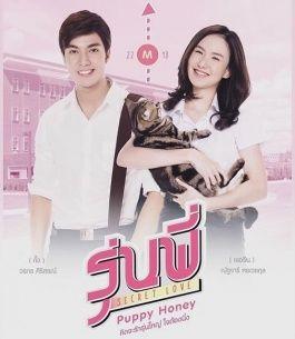 Senior Secret Love Puppy Honey Secret Love Thai Drama Secret