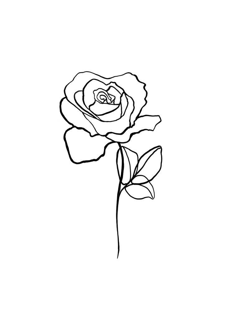 Botanical Line Art Print Rose Flower Print Scandinavian Etsy In 2020 Line Art Line Art Drawings Rose Line Art