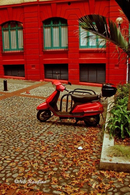 Red motor scooter, Auckland, a photo from Auckland, North Island