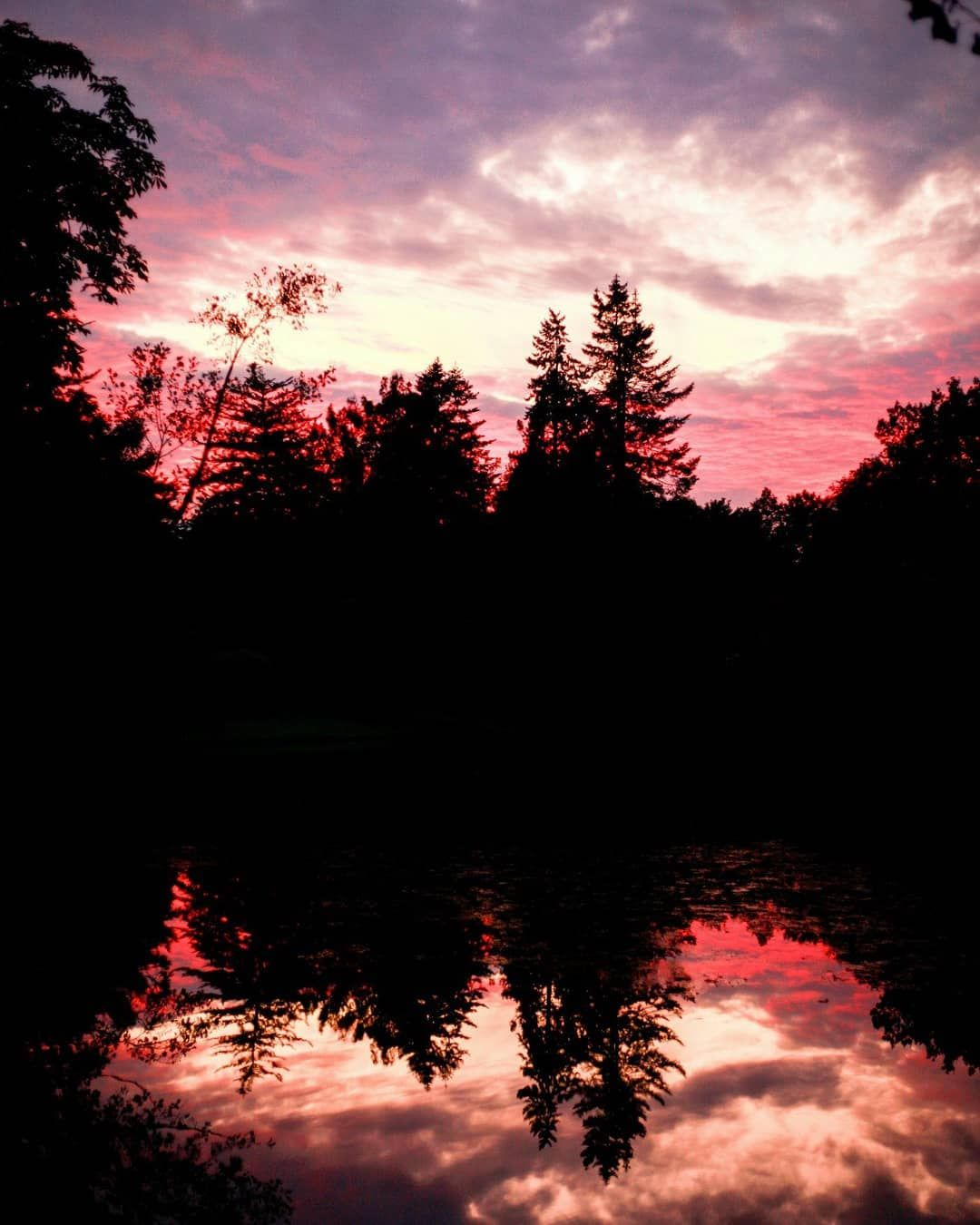 Autumn lights. Kassel, Karlsaue.  Photographer: @salogwyn_fine_Art  #nature #naturelovers #casselfornia #kassel #kasselfornia #wonderful_places #wonderfullife #beautifulnature #beautifullight #motherearth #worldbestshot #seascape #photography #divine_worldplaces #challenge #photooftheday #photoshoot #colorful #gurushotschallenge #gurushots #shotaward #ig_mood #autumn #autumnvibes🍁 #amazing_shots #trees #sundown #glowing #redcolour #color