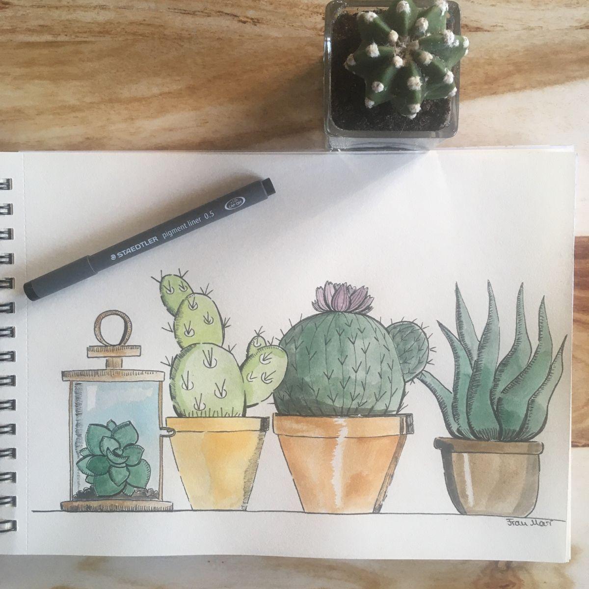 This original beautiful cactus family (size A4) is looking for a new home. Find more of my art on Instagram @frau_mari_illustration   #watercolorillustration #cactusart #watercolorart #watercolorartist #illustration #illustrator #howtopaint #acuarela #cottageart #cottagedecor #cottagegarden #cactuslove #cactusplants #kaktus #animalillustration