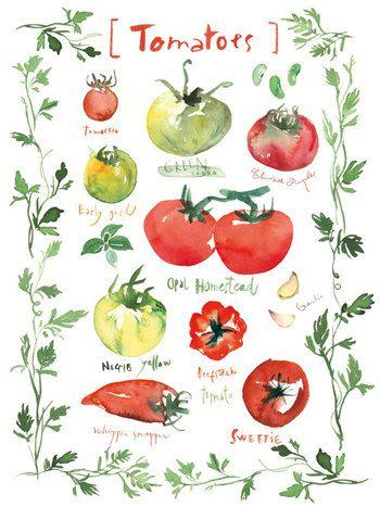 les fruits et legumes en anglais pdf