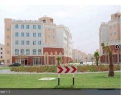 f9019361bb2d28c828e677e59b5480f0 - Studio Apartment For Sale In Discovery Gardens Dubai