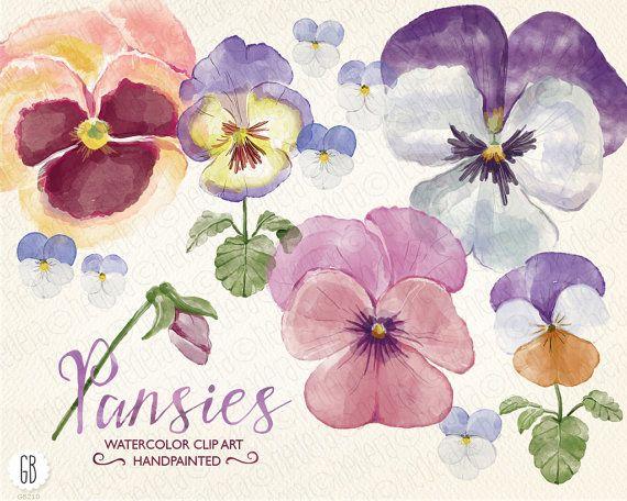 Aquarelle Stiefmütterchen, Stiefmütterchen, hand bemalte Frühlingsblumen, Viola, Blumenstrauß, Florals, ClipArt, Aquarell, diy Einladung, Party-Briefpapier