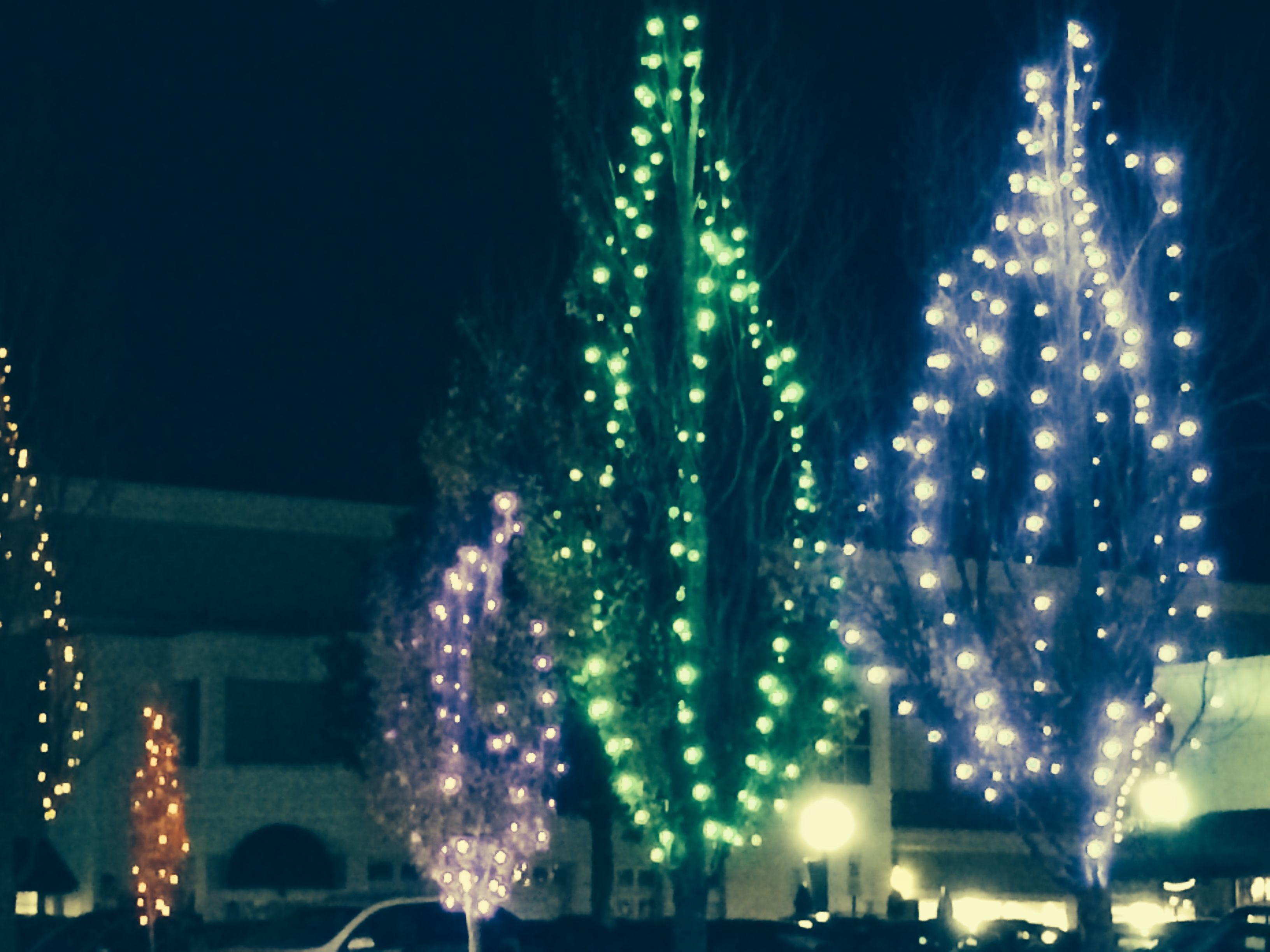 Lights At Cameron Village Shopping Center Raleigh Nc Christmas Time Is Here Holiday Decor Christmas Time