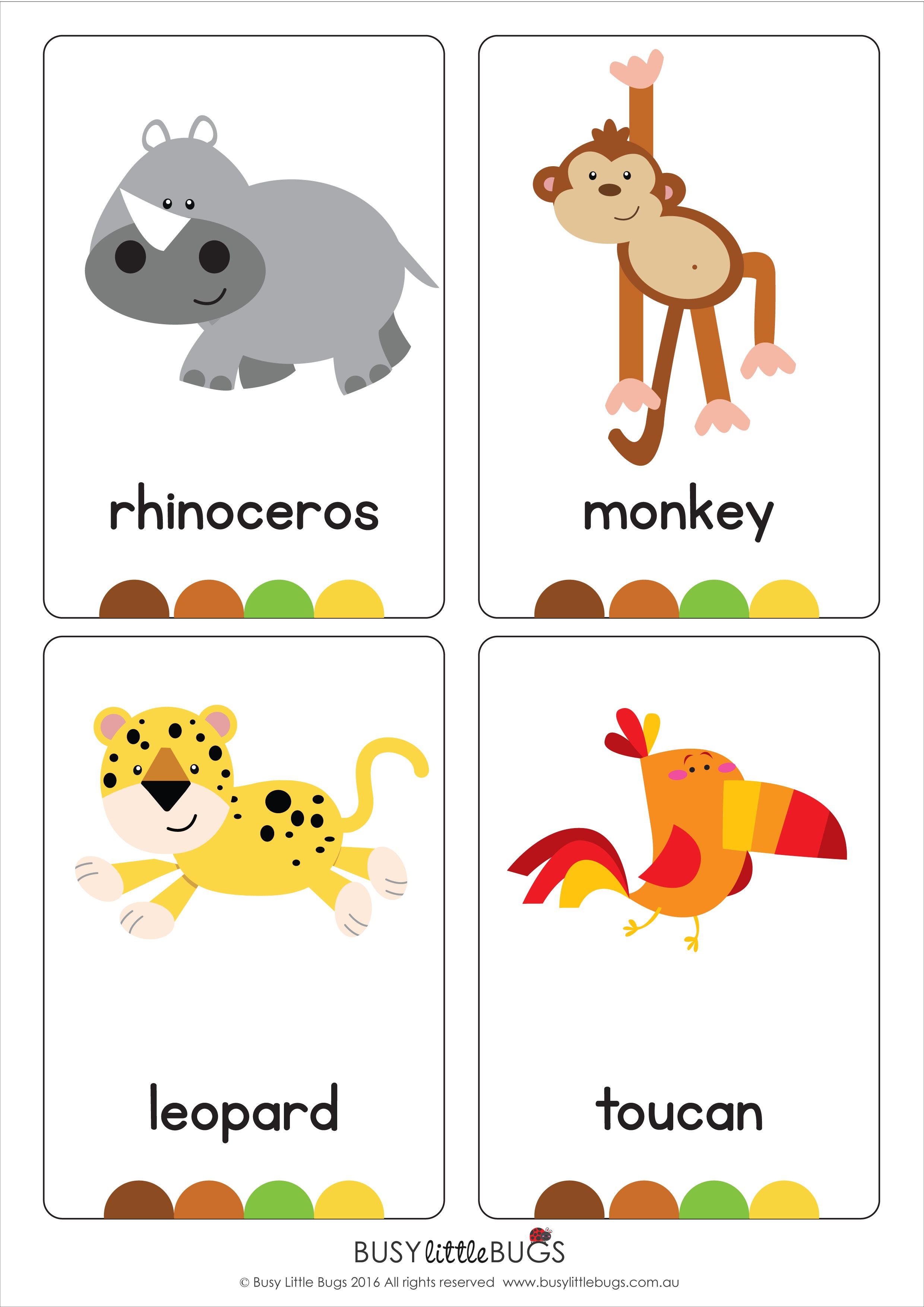 Jungle Animal Flash Cards In The Jungle
