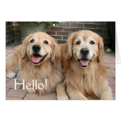 Two Golden Retriever Dogs Outside Thinking Of You Card Golden