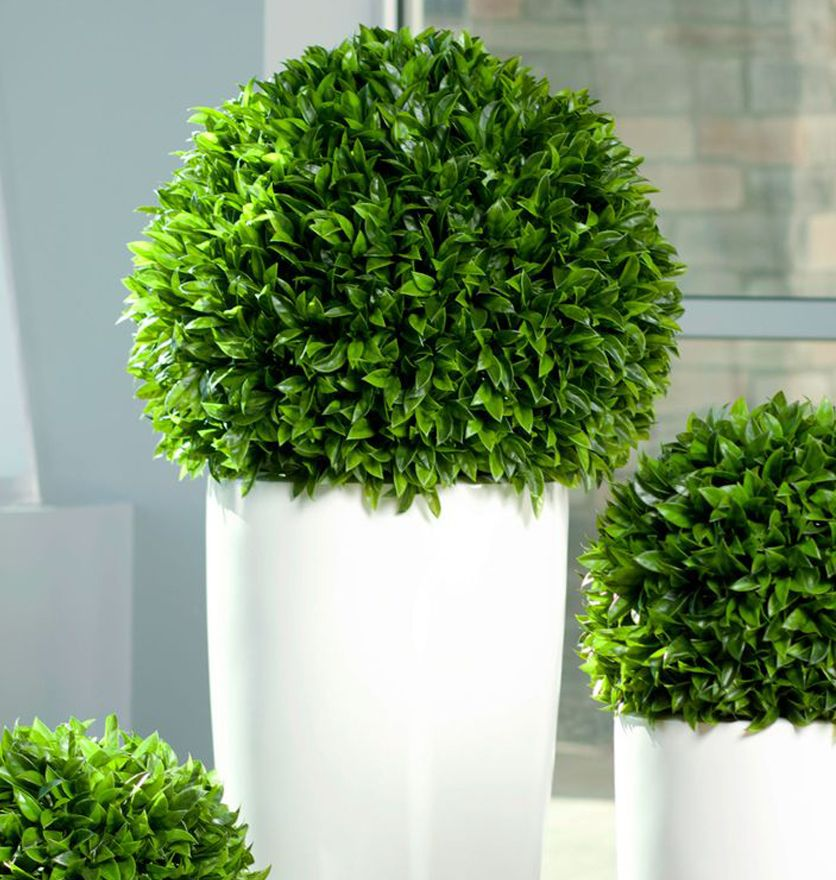 Indoor Plants Online #38: 1000+ Images About Planters On Pinterest | Artificial Plants, Planters And Garden Supplies