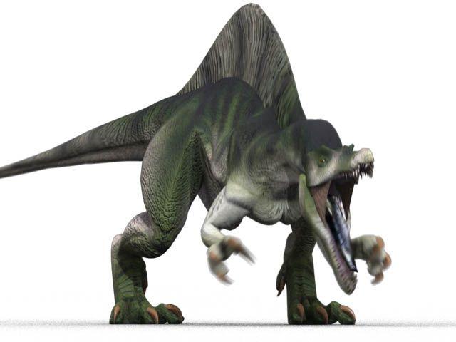 Spinosaurus1.jpg (640×480) - Dinosauria, Saurischia, Theropoda, Spinosauridae, Spinosaurinae. Auteur : Ryanz720, 2008.