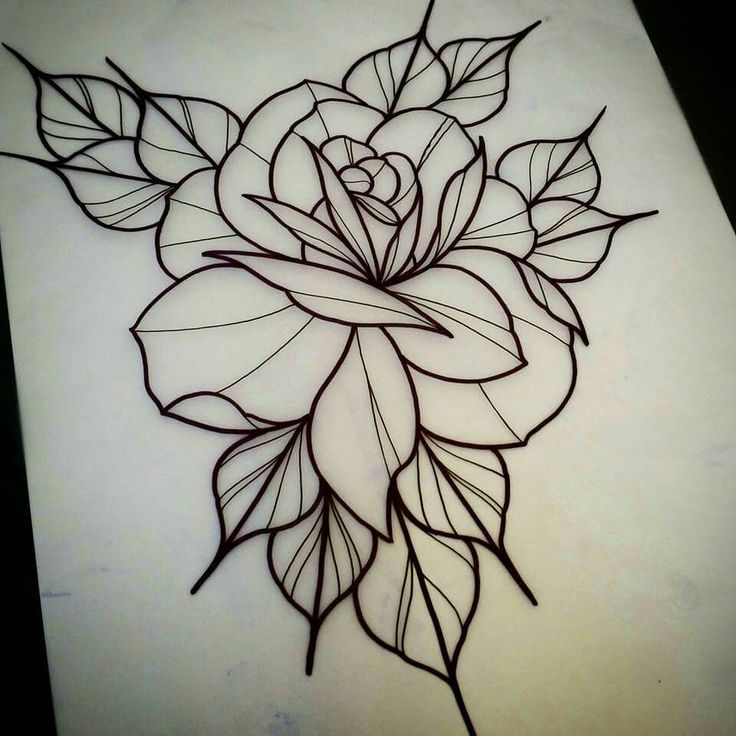 Image Result For Flash Art Flower Outline Traditional Rose Tattoos Traditional Tattoo Flowers Rose Tattoo Design