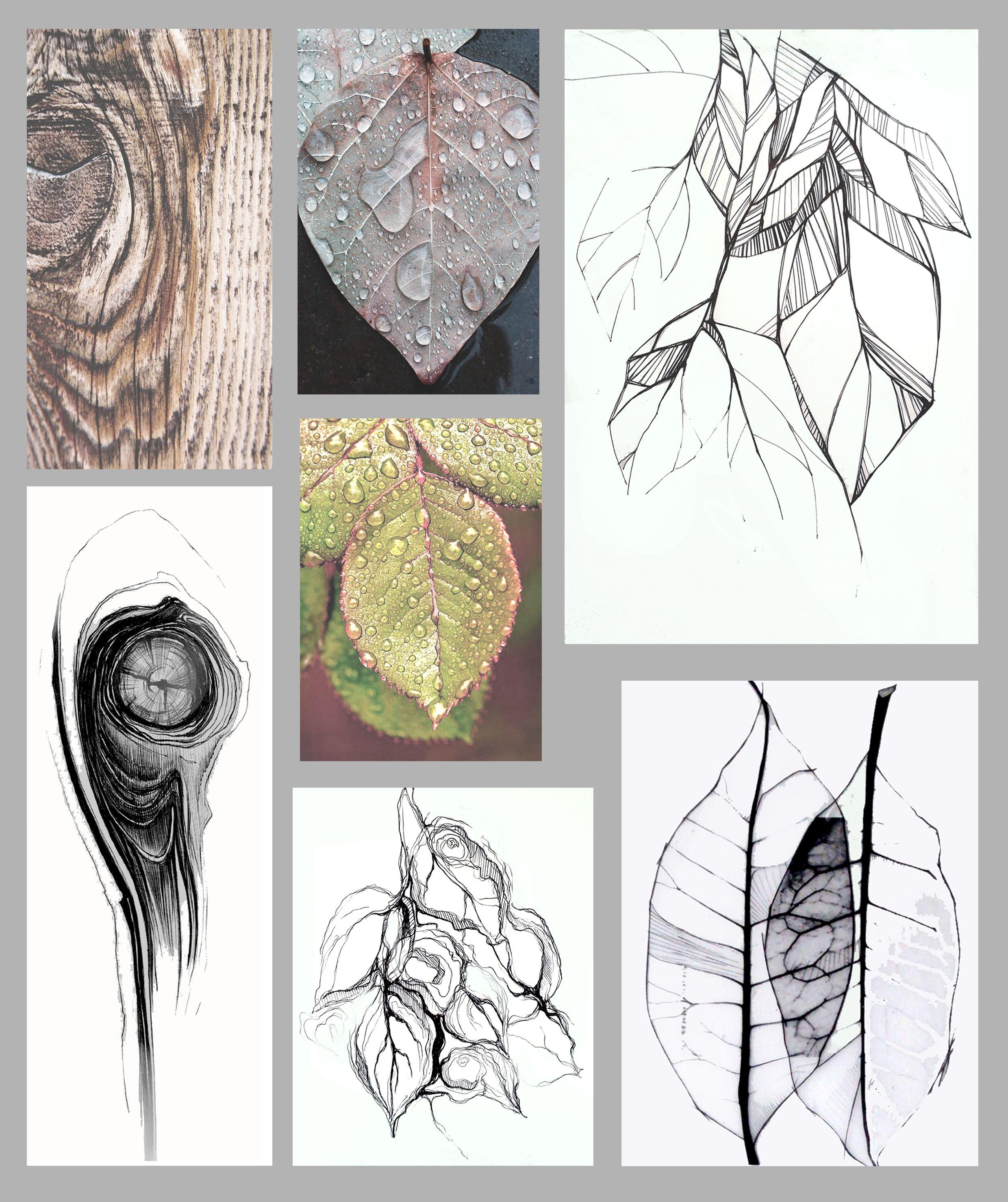 Inspired by nature - graphics - Murga