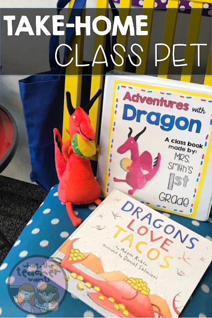 Dragons Love Tacos Class Pet With Images Class Pet Dragons