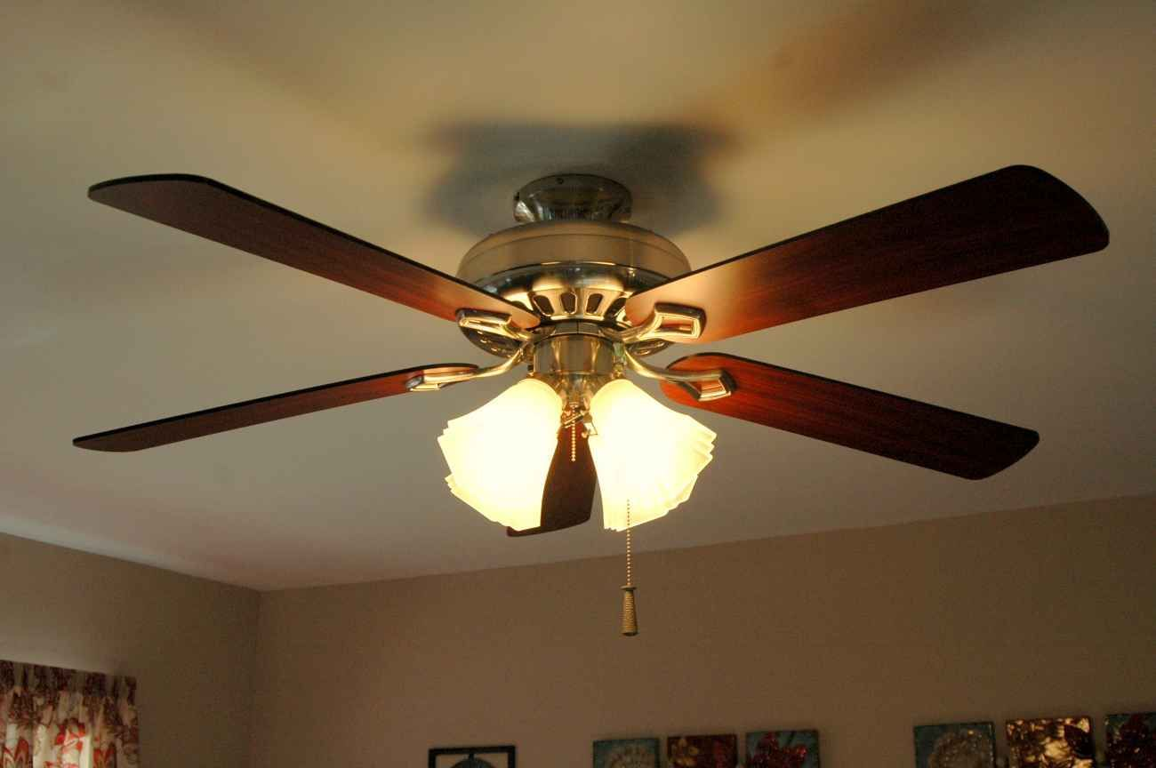 Elegant Ceiling Fan For Home Stena