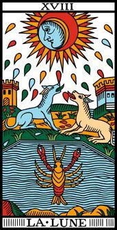 Voir Les Cartes Du Tarot Reconstruit Par Camoin Et Jodorowsky