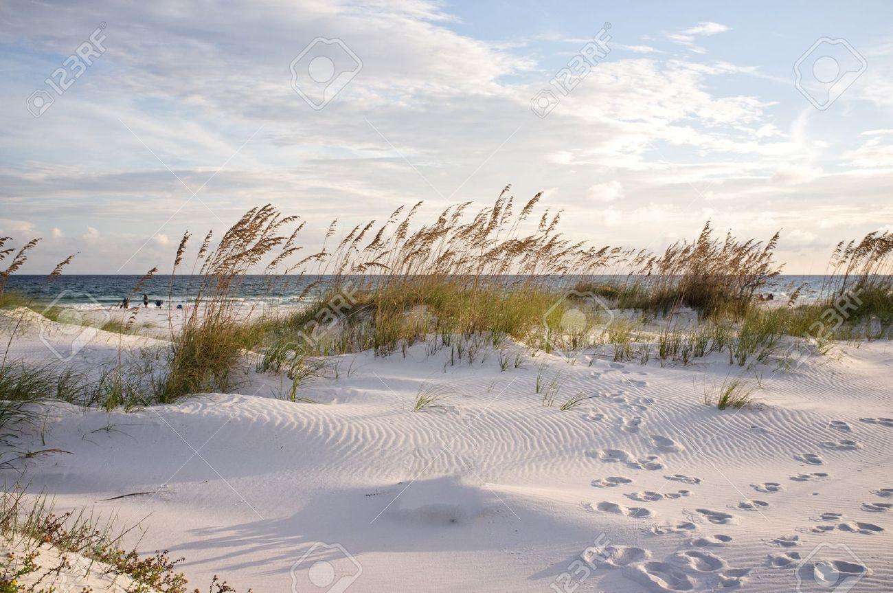 Dunes Hotel In Pensacola Beach Fl